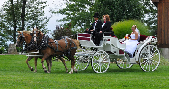 Jacob and Jessica Lubert Wedding at Armstrong Farms in Saxonburg PA