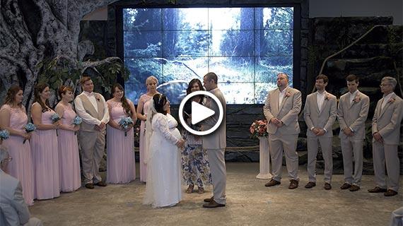 National Aviary in Pittsburgh - Laura and Brett's Wedding