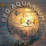 Pittsburgh Zoo and PPG Aquarium